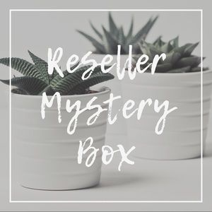 Not So Mystery 8 Piece Reseller Box B10